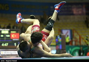 Photos 3  2017 Freestyle Wrestling World Cup 19